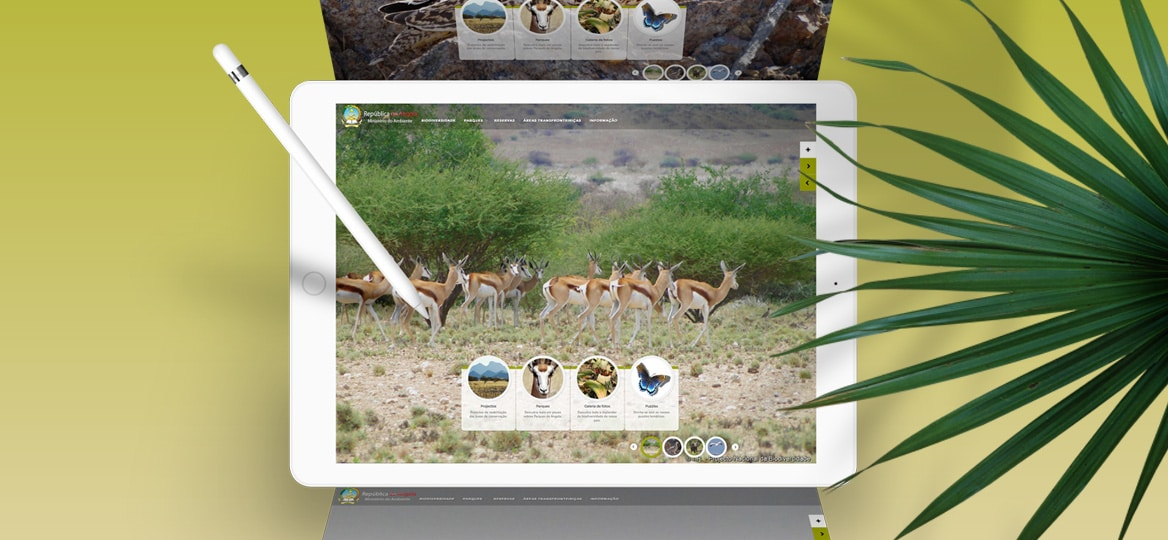 Biodiversidade Angola